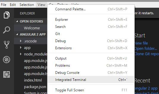 Visual Studio Code Integrated Terminal